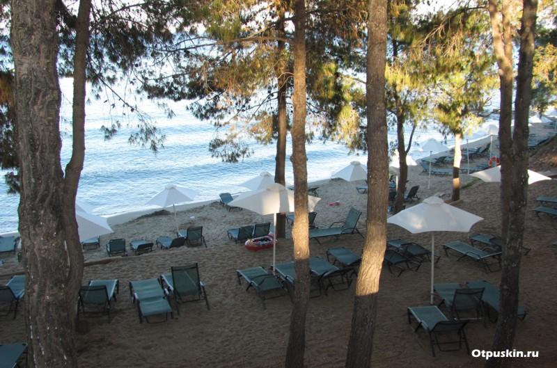 Хороший пляж для детей прямо в сосновом лесу на острове Крит в Греции