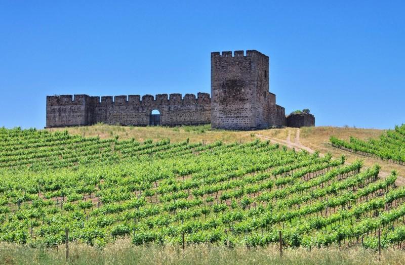 Винный туризм Португалии
