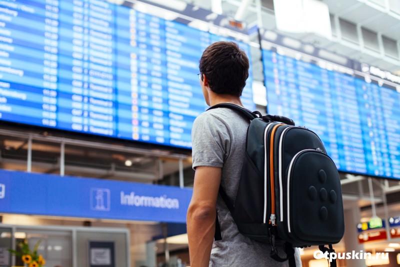 Разница между чартером и регулярным рейсом
